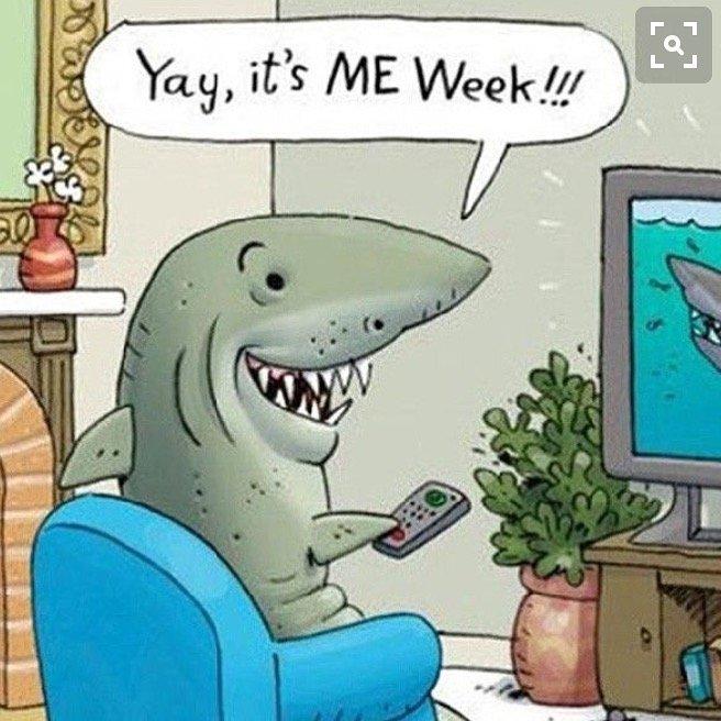 Shark Week Humor