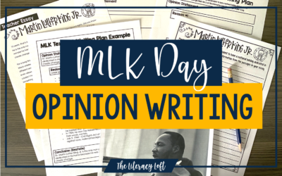MLK Day Opinion Writing